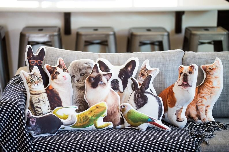 Pillows of different animals — cats, dogs, lizards, birds, rabbits, and more — on a couch