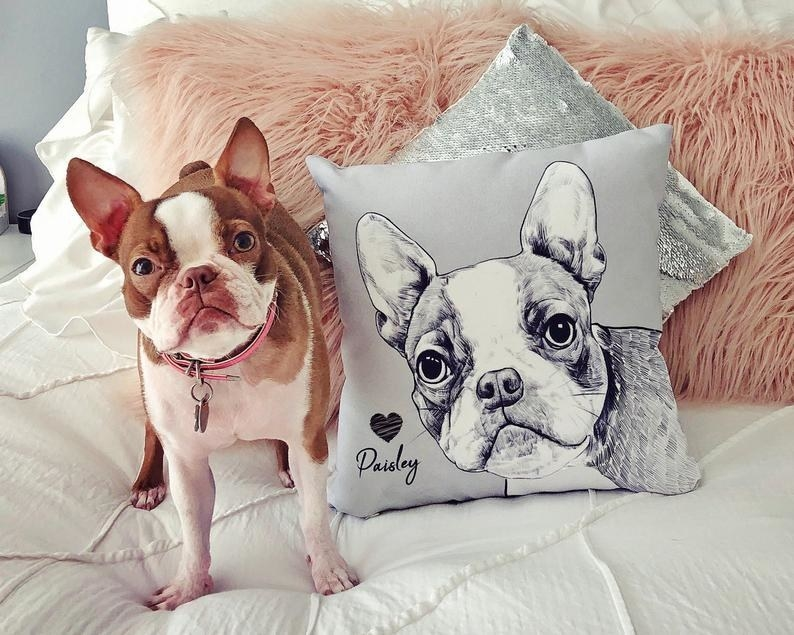 Dog standing next two a pillow with its illustrated face on it