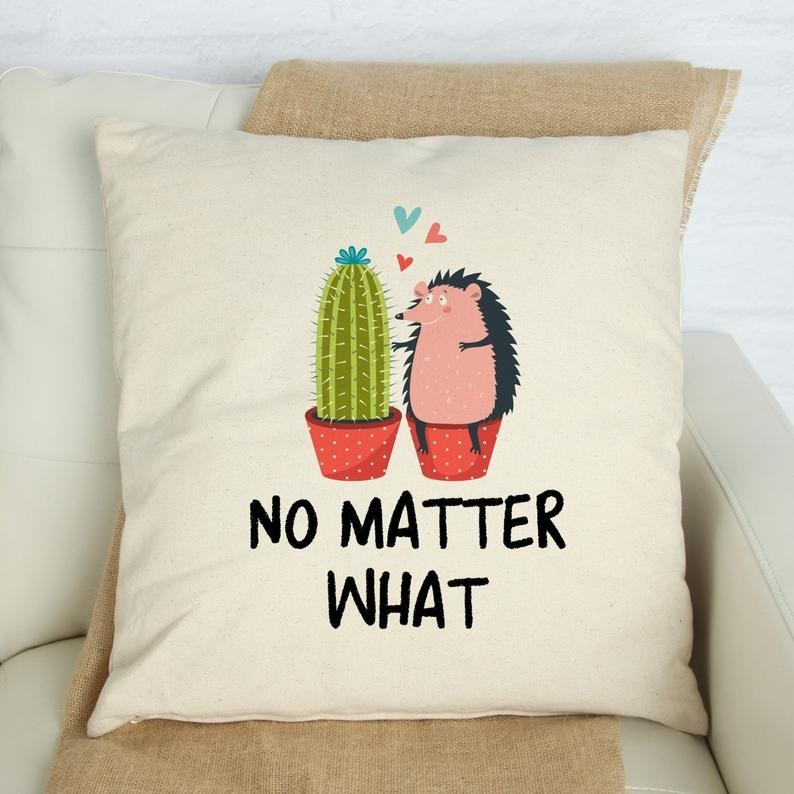 """The cover of a porcupine hugging a cactus with the text """"no matter what"""" on it"""