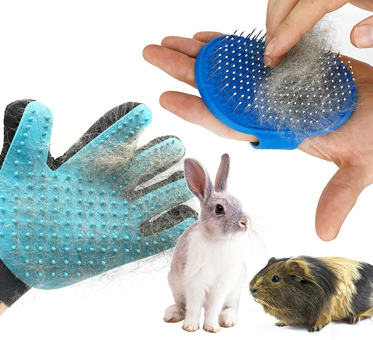 Models use the aqua glove and blue brush to brush a white and gray rabbit and a brown and black guinea pig