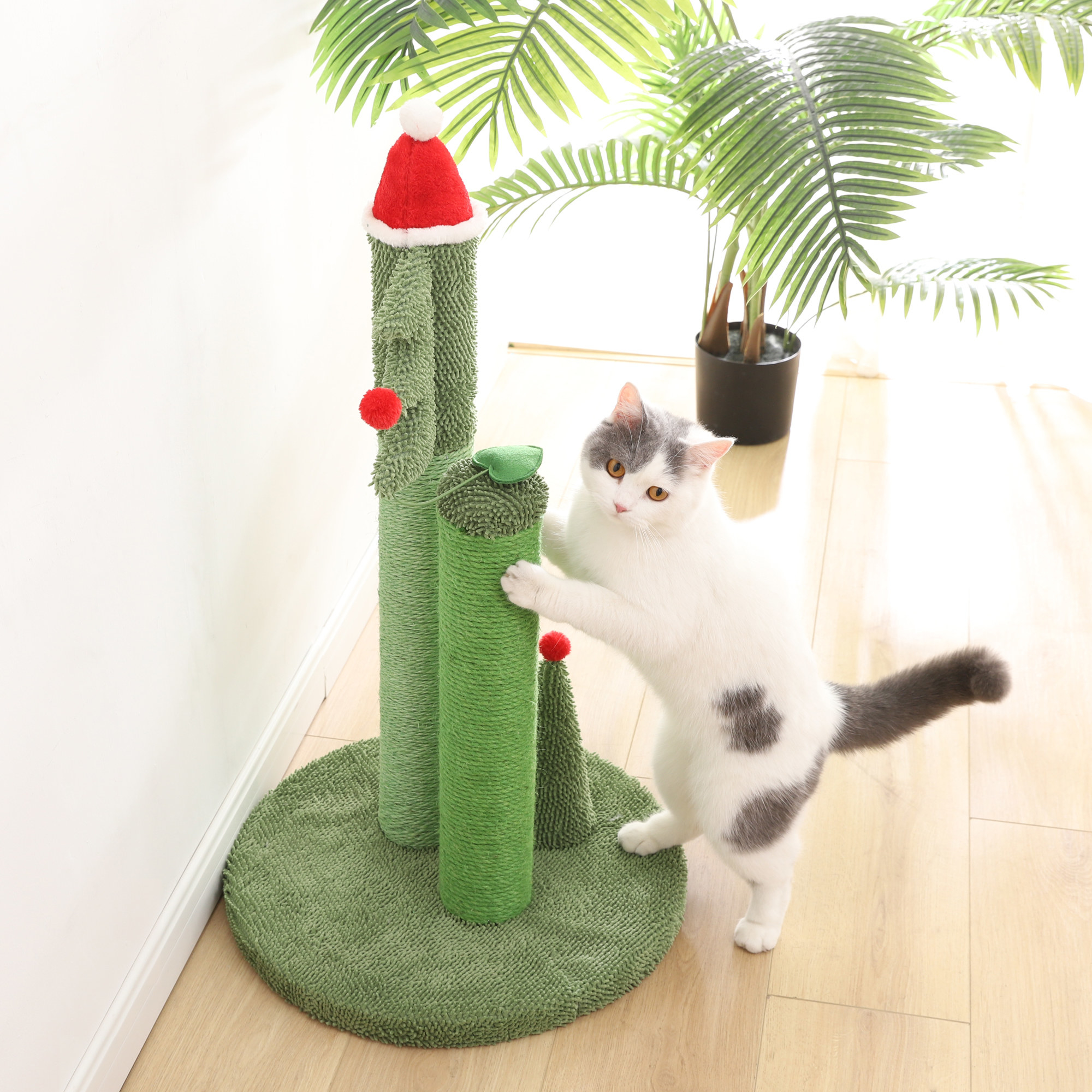 A cat playing with the green cat tree