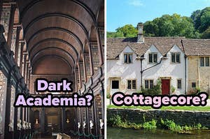 """""""Dark Academia?"""" over a library and """"Cottagecore? over cottages"""