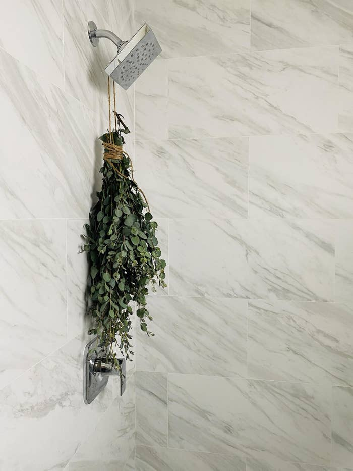 The bundle of eucalyptus hanging from a shower