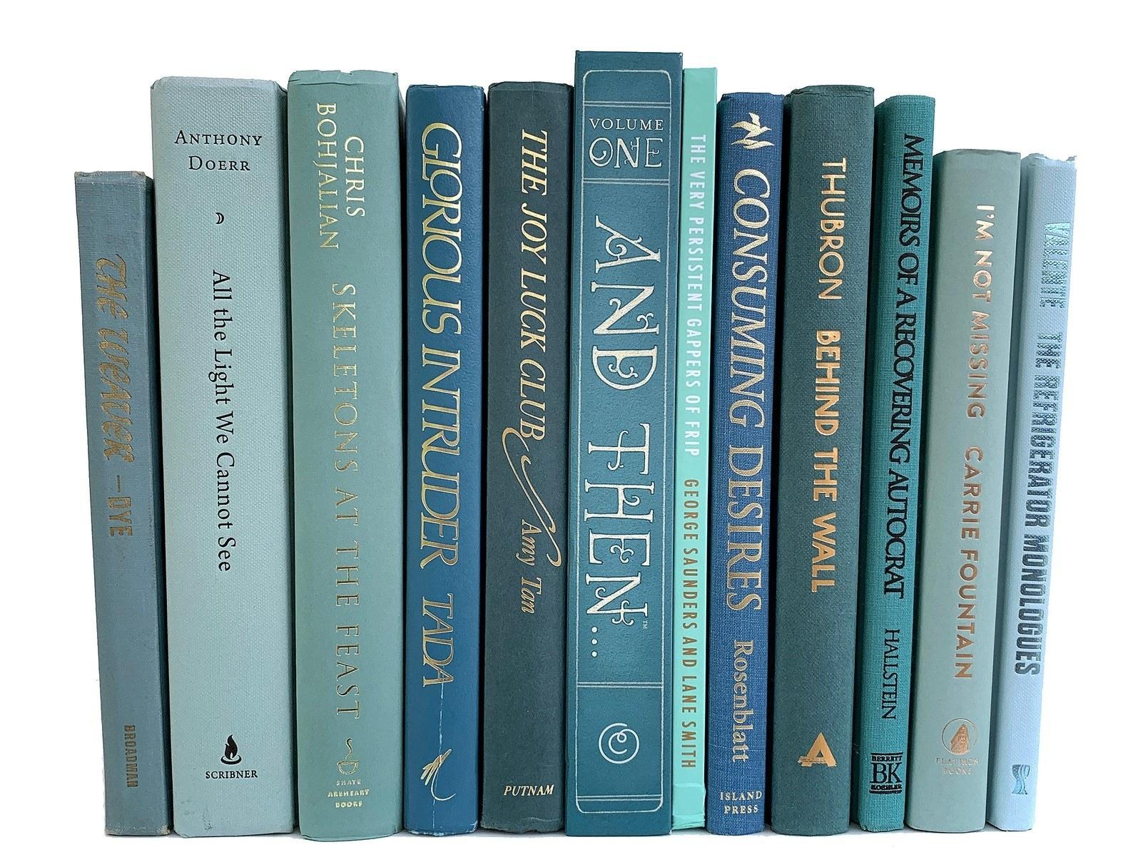 an array of blue books