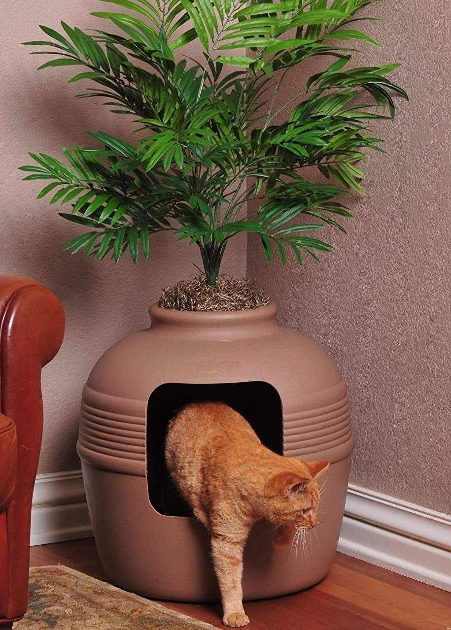 A cat stepping out of the planter shaped litter box