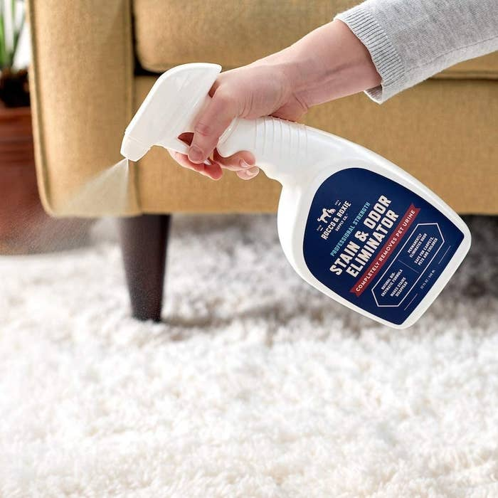 A person spraying the stain and odour eliminator onto a shaggy carpet