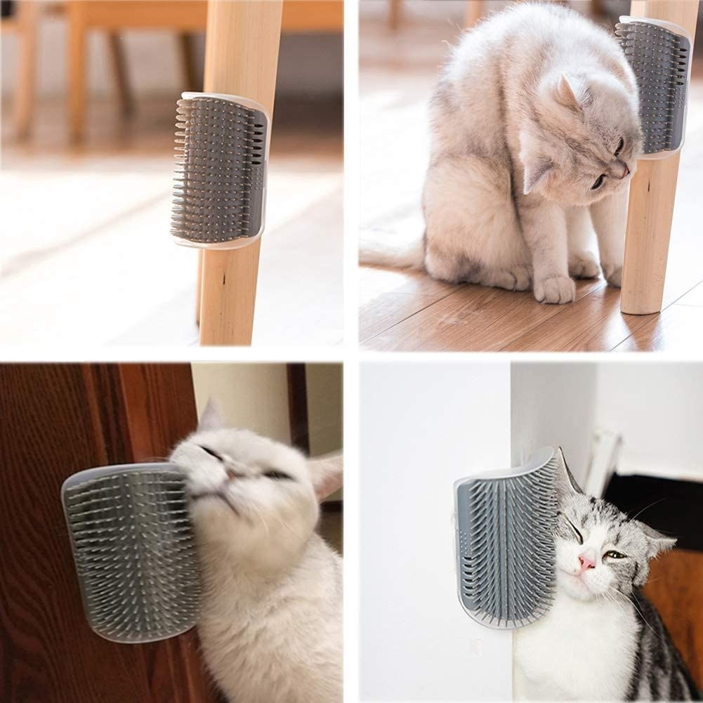 The self-grooming brush attached to various corners with a cat rubbing its face against it