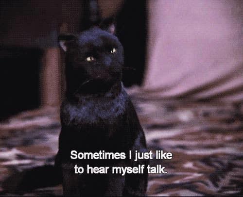 "Screenshot of Salem the black cat with ""sometimes I just like to hear myself talk"" written underneath him"