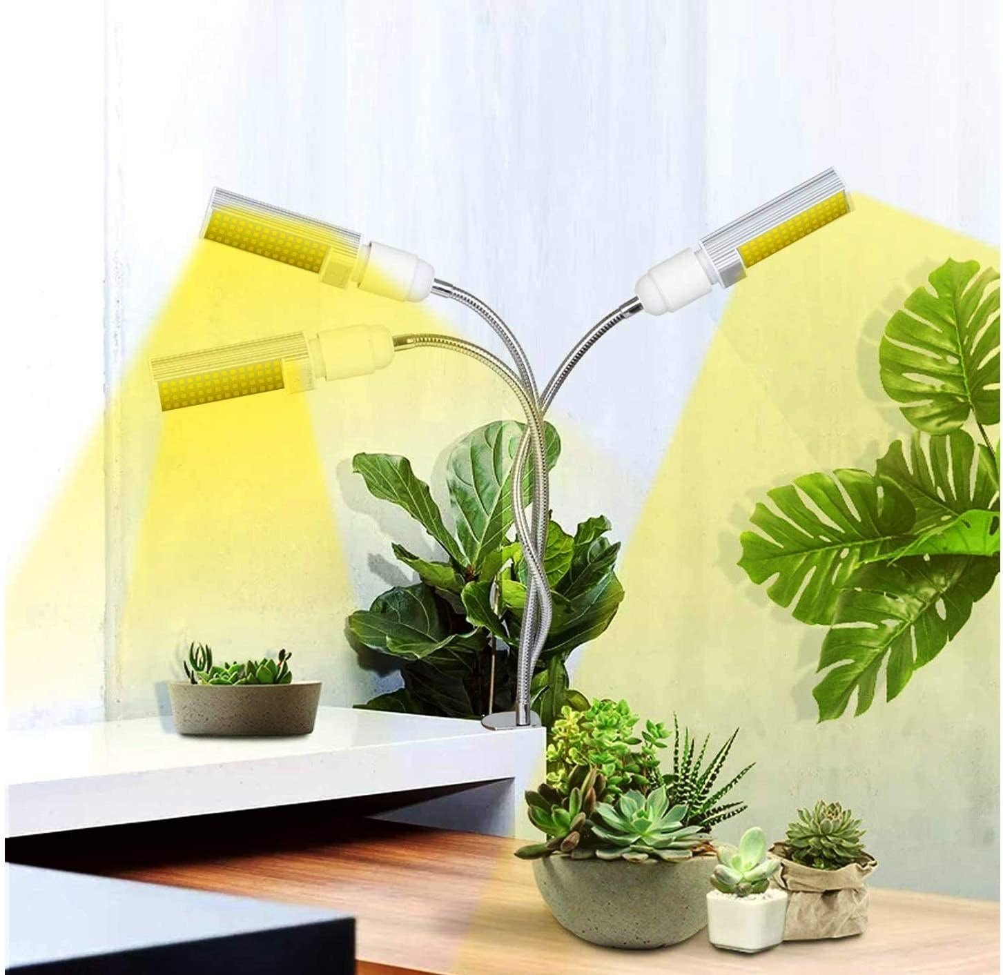 The grow light surrounded by plants