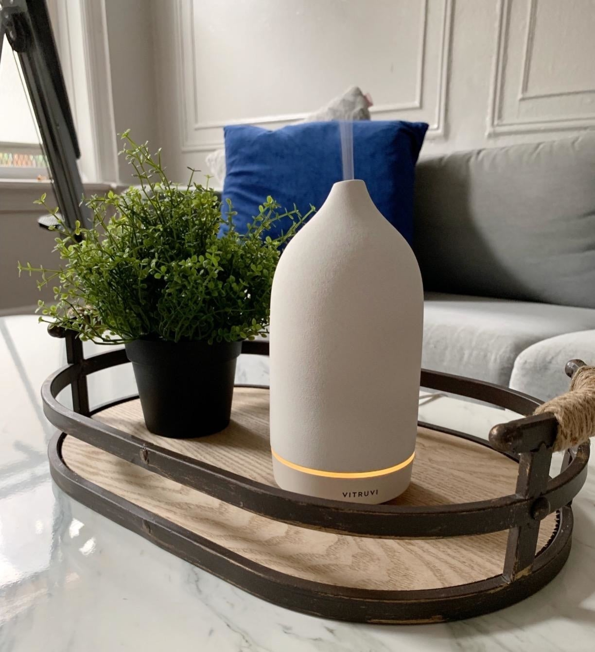 Reviewer image of cream-colored diffuser