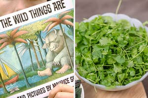 """Side-by-side images of """"Where the Wild Things Are"""" and cilantro"""