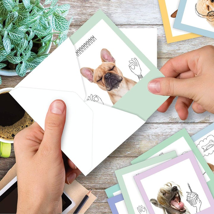 Card with photo of dog and funny sketched hands