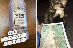 "On the left, Orly nail polish remover with the text ""The fastest remover!"". On the right, a cat posing with a coloring page of a cat showing its butt"