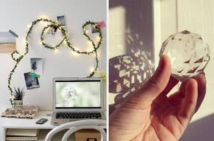 light with vines and crystal