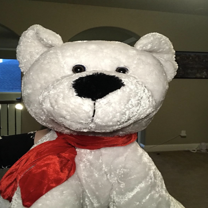 the same stuffed animal now looking brighter and clearer to see after using the ring light