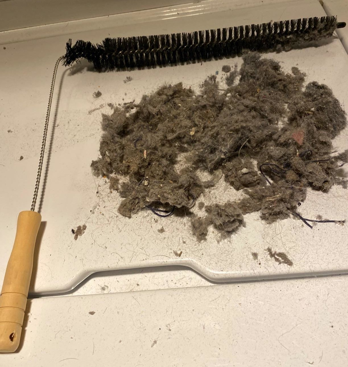 reviewer photo showing the dryer lint brush next to a pile of dust and lint on their dryer