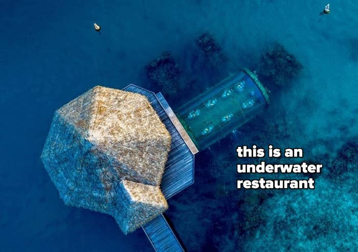 """the resort with text """"this is an underwater restaurant"""""""