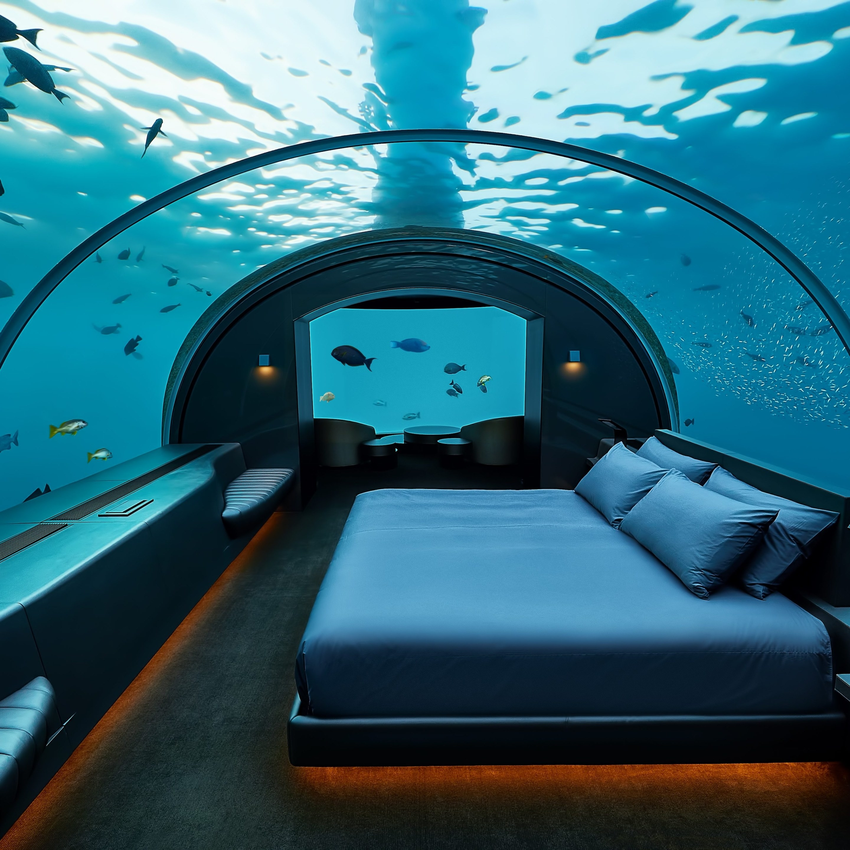 the underwater room with a domed glass ceiling and fish swimming in the ocean