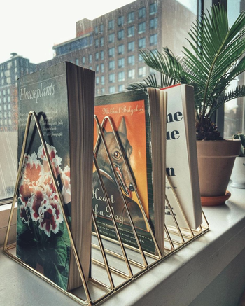 same organizer in gold holding books about plants