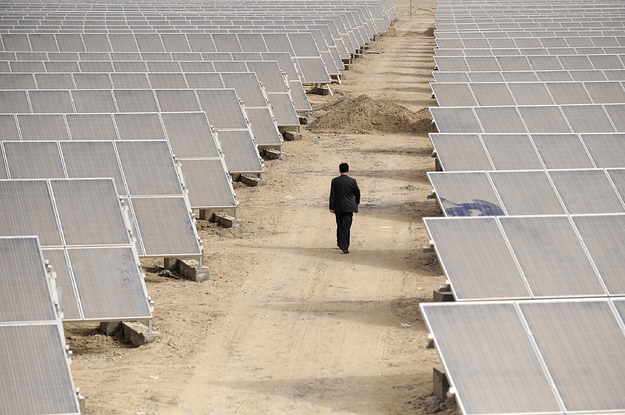 US Solar Companies Rely On Materials From Xinjiang, Where Forced Labor Is Rampant BuzzFeed » World RSS Feed BUZZFEED » WORLD RSS FEED : PHOTO / CONTENTS  FROM  BUZZFEED.COM #NEWS #EDUCRATSWEB