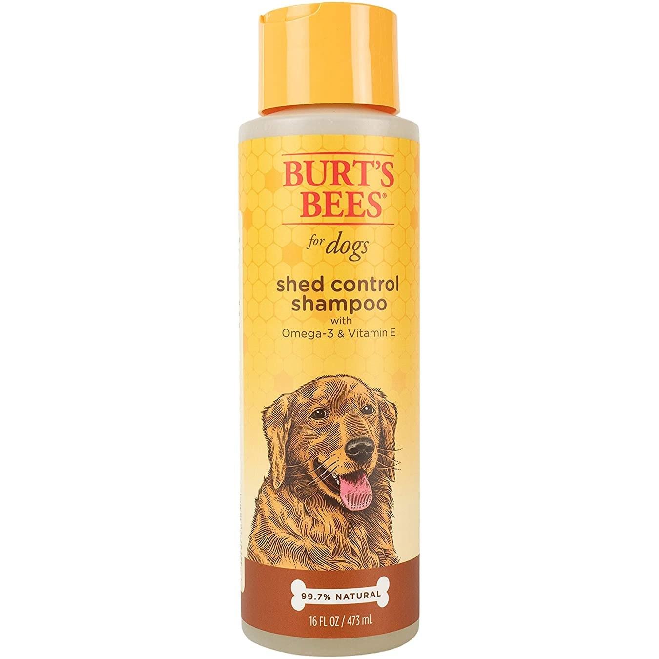 The shampoo bottle