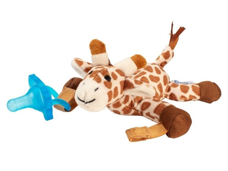 The giraffe toy and pacifier