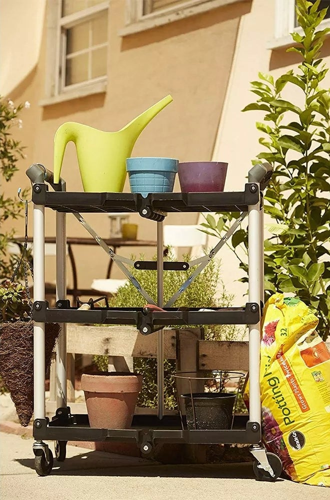The cart on wheels holding gardening tools