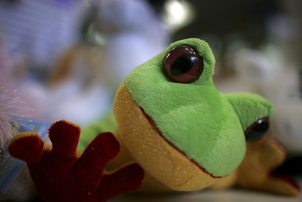 A frog Webkinz toy at a toy shop