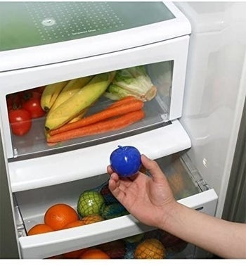 A person holding the BluApple product fresheners near their crisper drawer