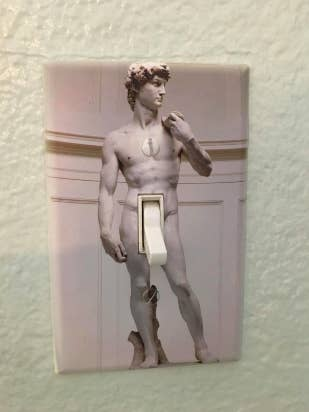 Reviewer image of standard light switch with plate cover over it, making it look like David's ding dong is the switch