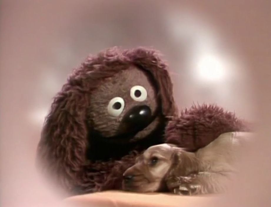 Rowlf comforts a puppy
