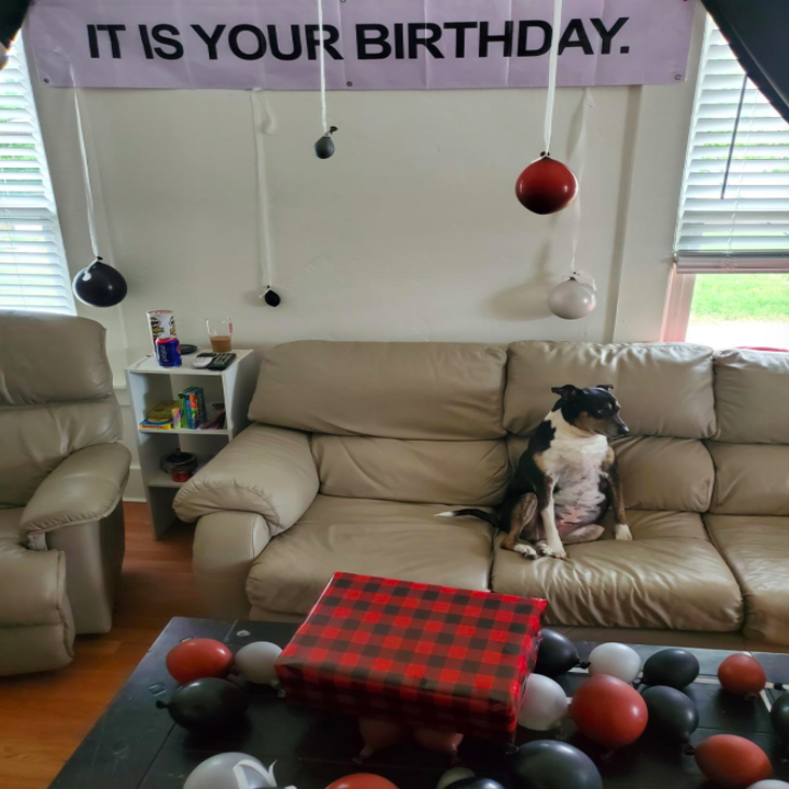 A customer review photo of their room decorated with the kit.