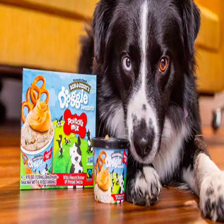 A doggy sitting next to the Doggie ice cream