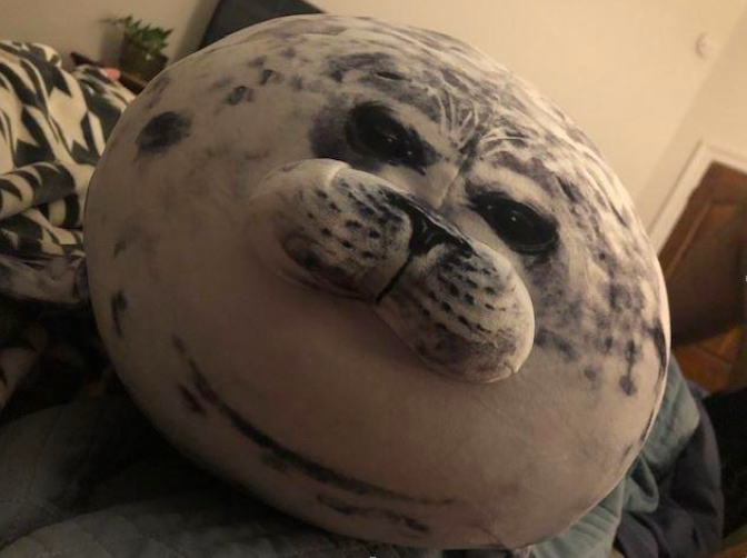 a reviewer's photo of the seal pillow on their bed