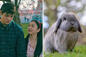 "On the left, Noah Centineo and Lana Condor as Peter and Lara Jean in ""To All the Boys I've Loved Before P.S. I Still Love You,"" and on the right, a sweet bunny in the grass"