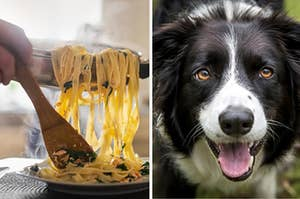 A man is putting pasta on a plate with a dog on the right sticking his tongue out