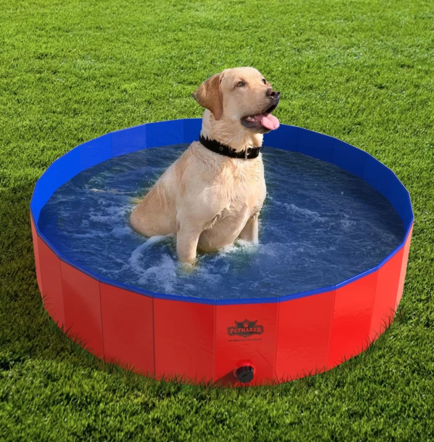 The pet pool and bathing tub