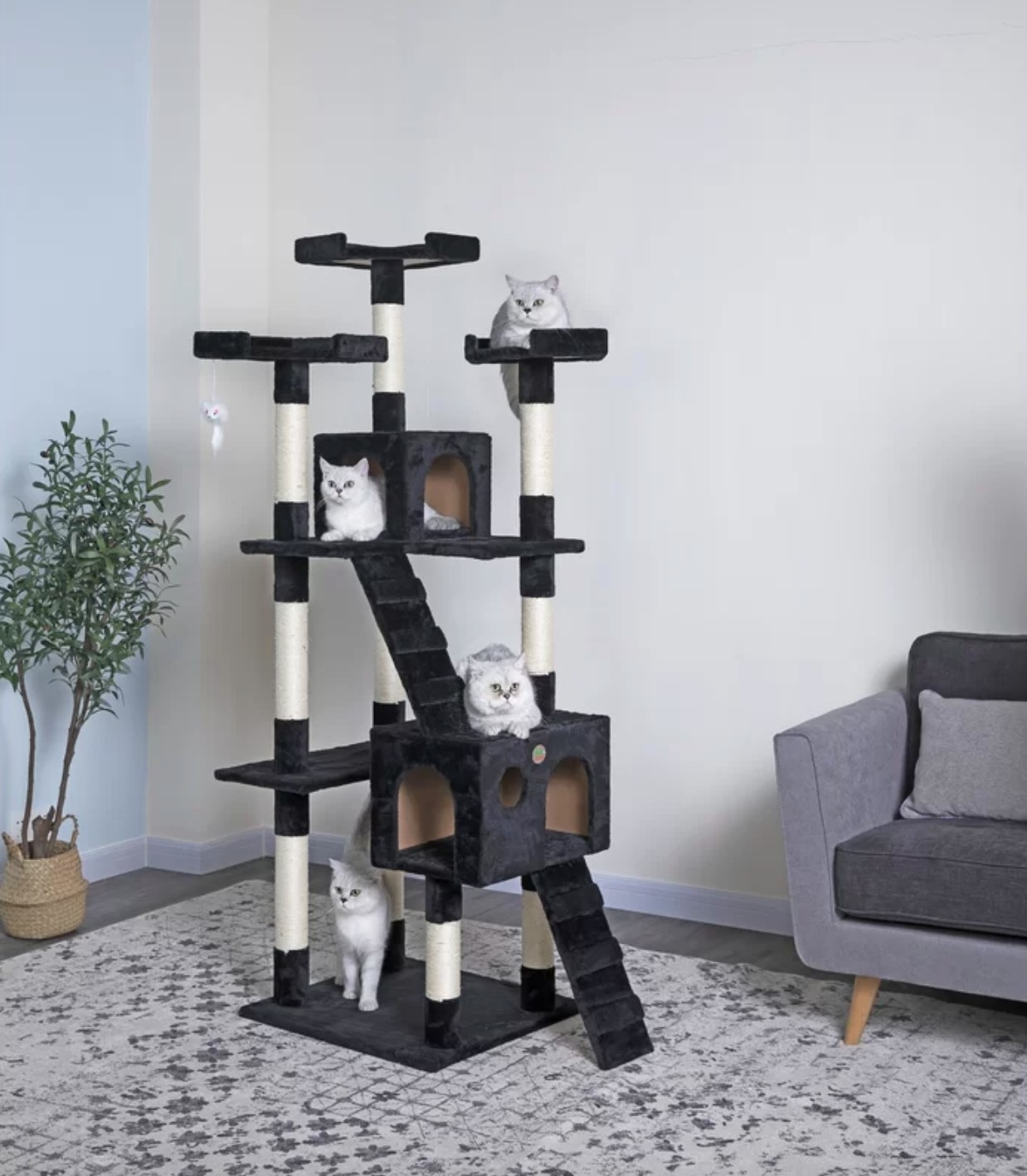 The two tier cat tree in black