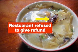 Cockroach in soup and customer gets no refund
