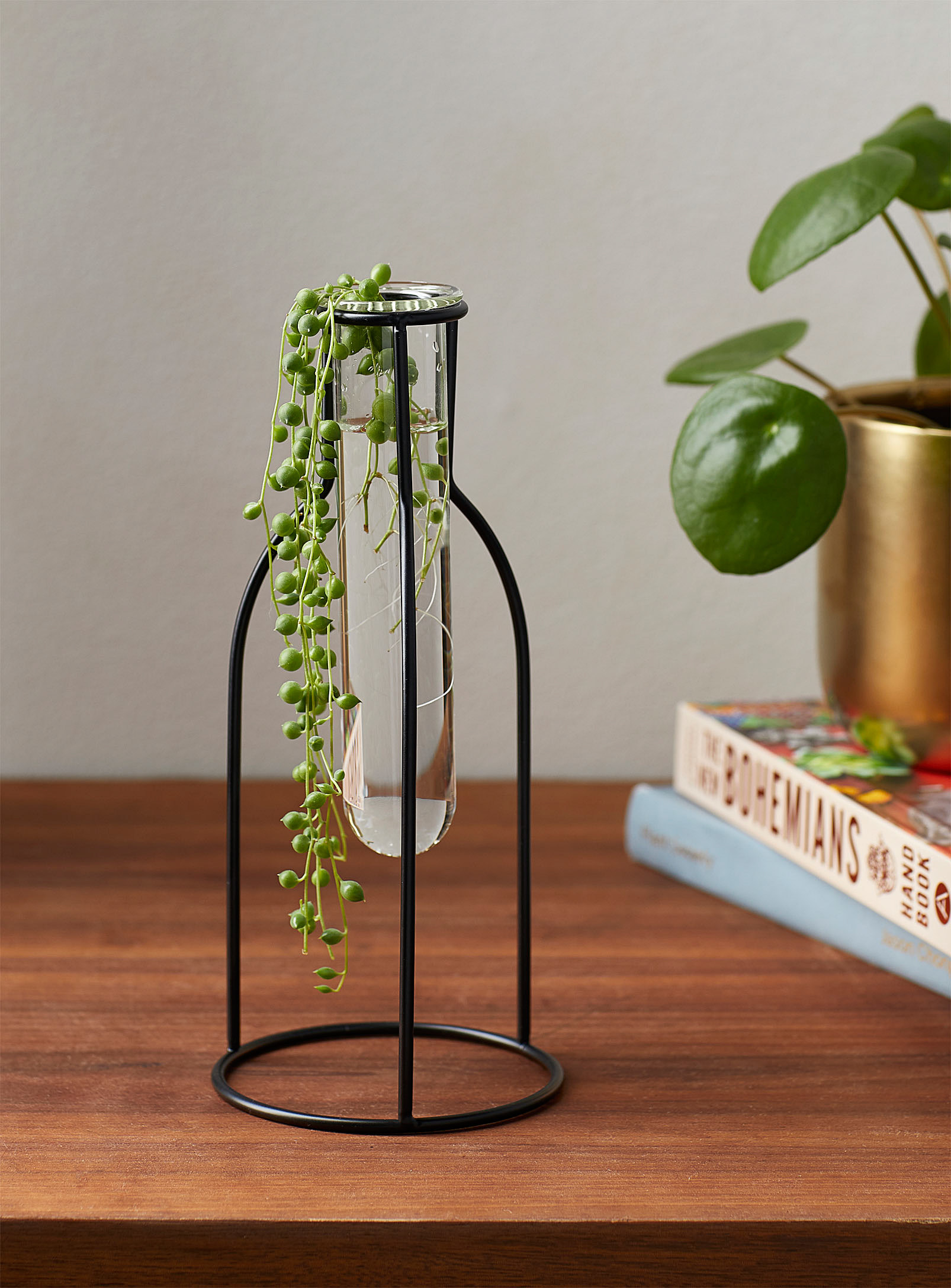 plant in vial on stand