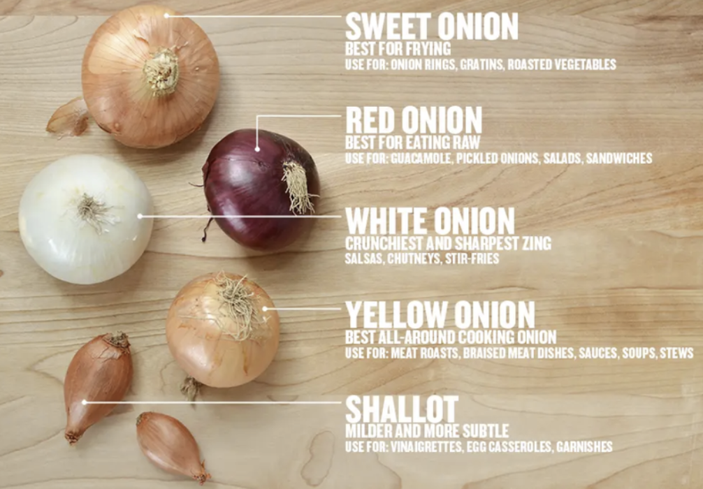 A cheat sheet labeling five most common types of onions
