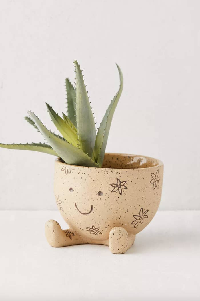 The planter sitting with a succulent in it