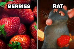 strawberries and remy the rat