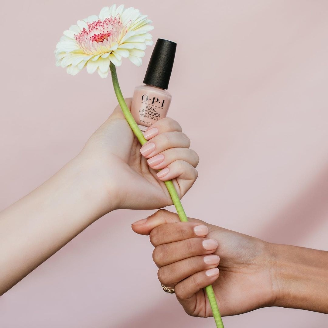 A pair of hands with their nails painted in the same shade while holding a large gerber daisy