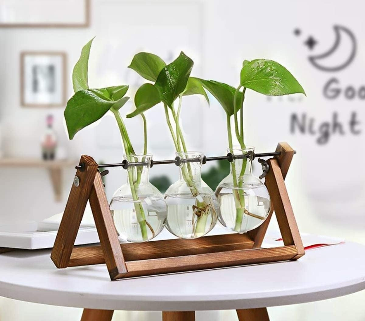 Three glass bulbs on a stand with water plants