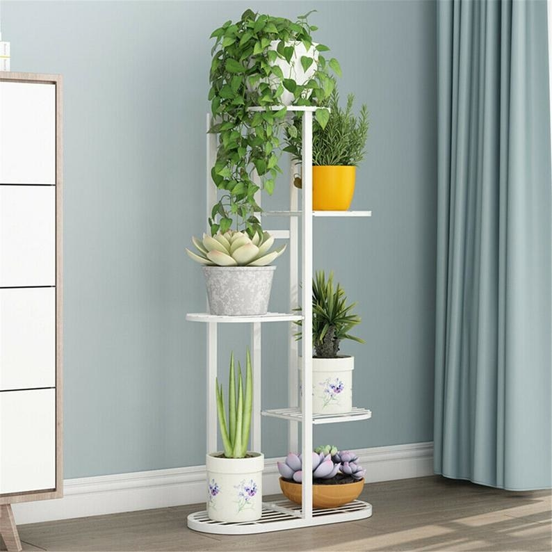 plants on each tier of the white Metal Flower Pot Plant Display rack