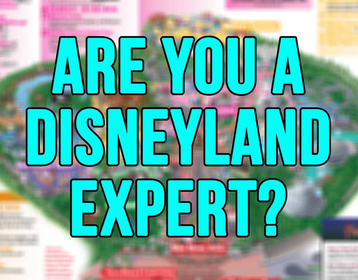 are you a disneyland expert