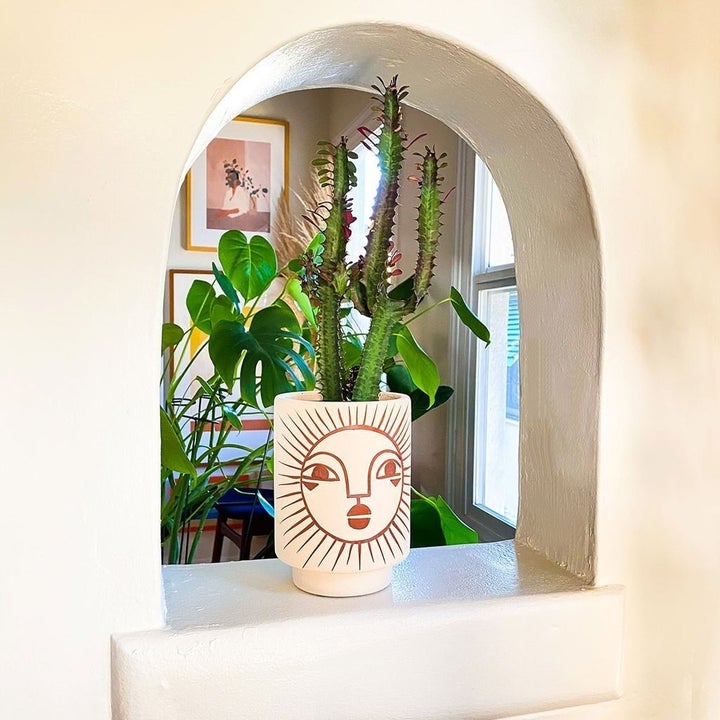 Sun face vase with cactus inside