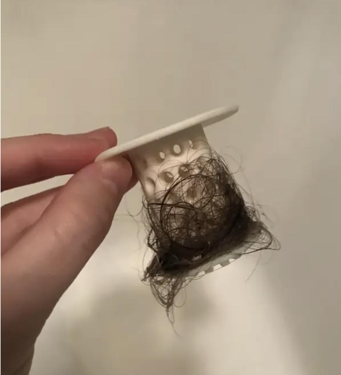 the tubshroom full of hair
