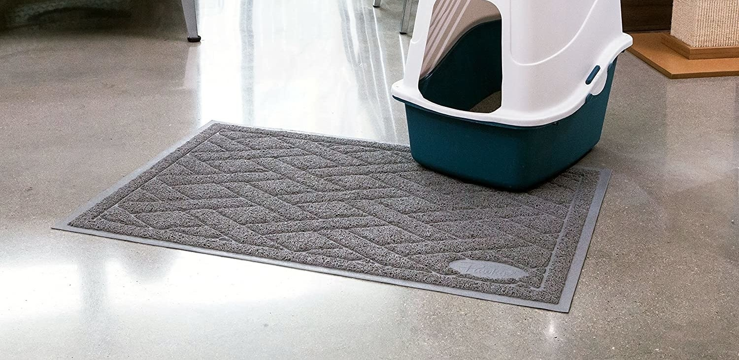 the mat in front of a cat litter box